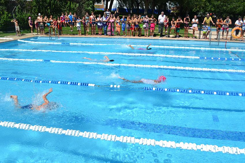 campeonato-natacion3